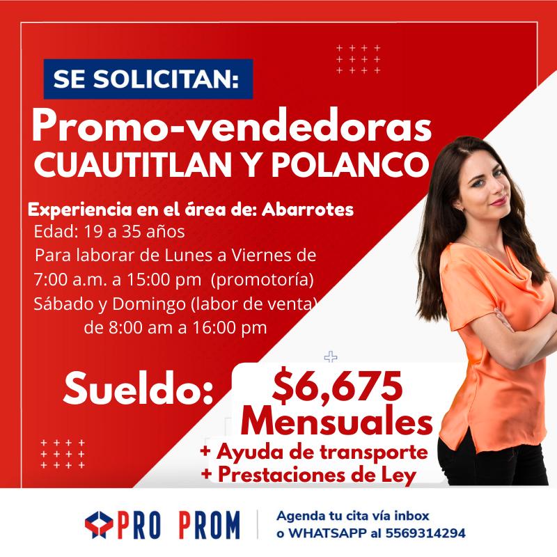 Promovendedoras Polanco
